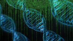 Un computer fatto di DNA